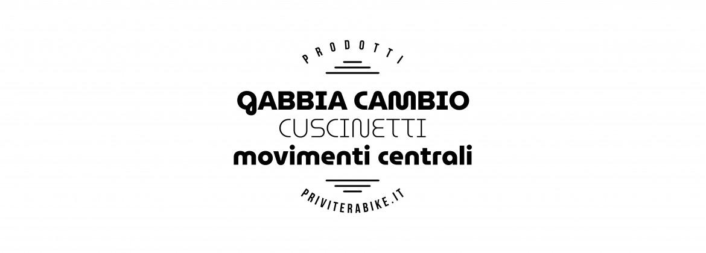 Gabbia Cambio | Cuscinetti | Movimenti Centrali